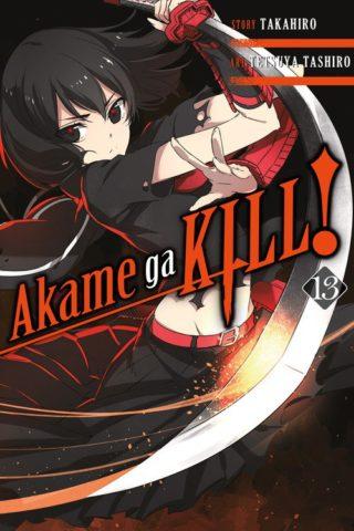 Akame ga Kill! Volume 13